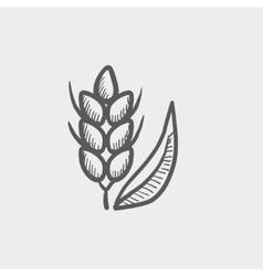Beans sketch icon vector