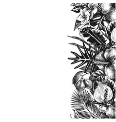 Hand drawn tropical background vector