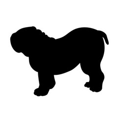 silhouette of bulldog isolated on white background vector image