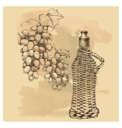 sketch grapes wine of for design vector image