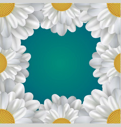 Square frame with daisies and a place for text vector