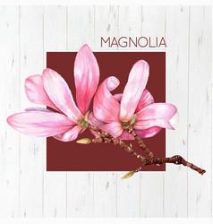 watercolor magnolia flower vector image vector image