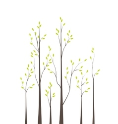 Trees 42 vector