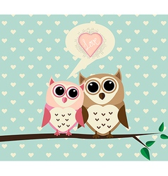 Couple Owl with Love vector image