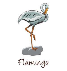 Flamingo color vector
