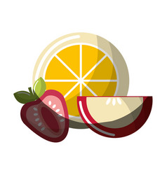 Orange strawberry and apple fruit icon vector