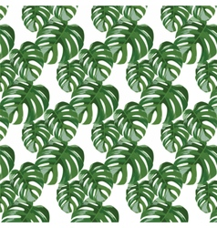 Palm tree leaves pattern vector