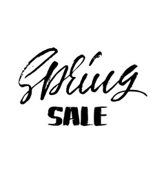 handwritten lettering spring sale hand drawn vector image vector image
