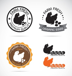 Set of an chicken and eggs label vector