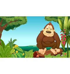 A gorilla in the woods vector