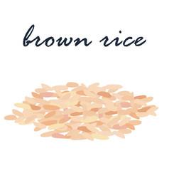 brown rice healthy food high fiber vector image