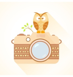 Camera and owl vector