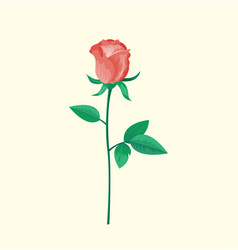 vintage pink rose flower can be used as greeting vector image vector image