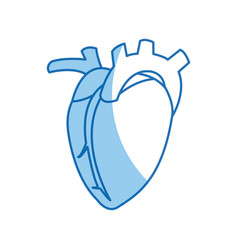 Heart organ healthy design graphic vector