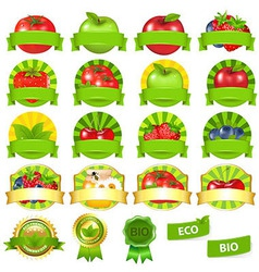Fruits And Vegetables Labels Set vector image