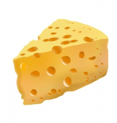 yellow cheese with holes vector image