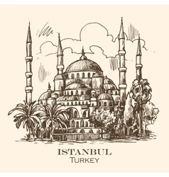 Istanbul blue mosque vector