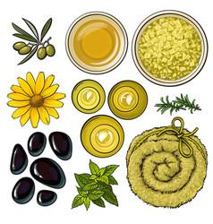 Yellow set of spa salon accessories - basalt vector