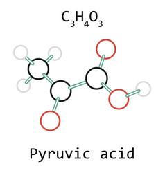 molecule pyruvic acid c3h4o3 vector image