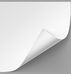Curled corner of white paper with shadow vector