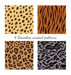 Set of seamless animal patterns vector