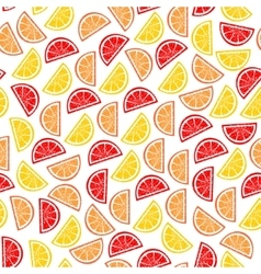 Citrus seamless pattern Slices of tropical fruits vector image vector image