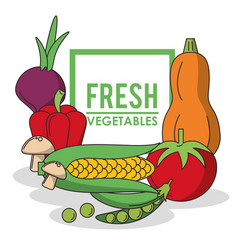 Colorful poster with set of fresh vegetables and vector