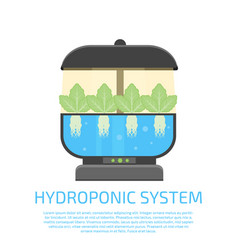 Hydroponic system icon vector
