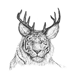 Psychedelic hand-drawn sketch of tiger face with vector