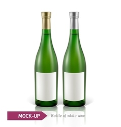 Bottles of white wine vector