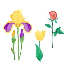 Cartoon petal vintage floral bouquet garden vector