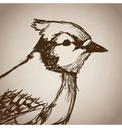 Bird portrait forest hand drawing vintage vector