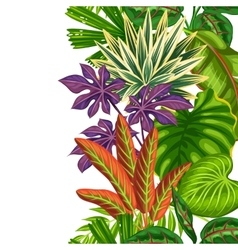 Seamless vertical border with tropical plants and vector