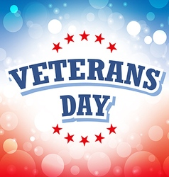 Veterans day usa banner on celebration background vector