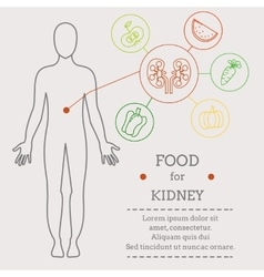 Food for kidney vector