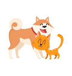 Akita inu dog and red cat kitten characters vector