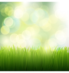 Natural background of grass vector