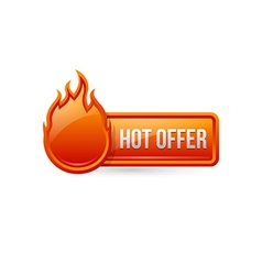 Glossy hot offer button with icon vector image