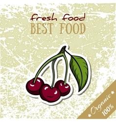 Healthy Food Cherry vector image