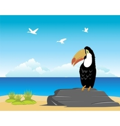 Tropical oceanside and beach vector