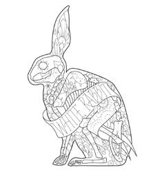 Outline rabbit vector