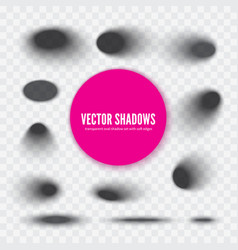 transparent oval shadow with soft edges vector image