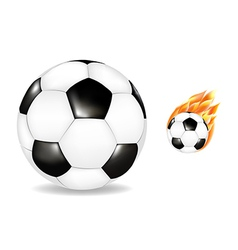 Two Soccerballs vector image vector image