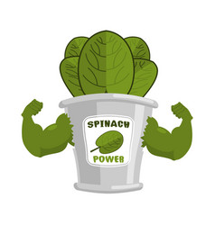Strong spinach tin powerful herbs for muscle vector
