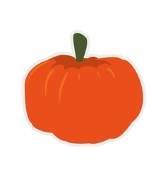 Pumpkin icon organic and healthy food vector