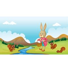 A bunny and squirrels vector image vector image