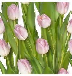 Seamless from pink tulips EPS 10 vector image