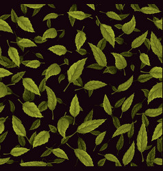 seamless texture of green leaf on black background vector image vector image