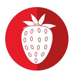 strawberry sweet vitamin nature shadow vector image