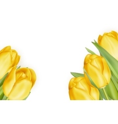 Bouquet of yellow tulips EPS 10 vector image
